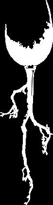 logo-vegaaixala-blanco