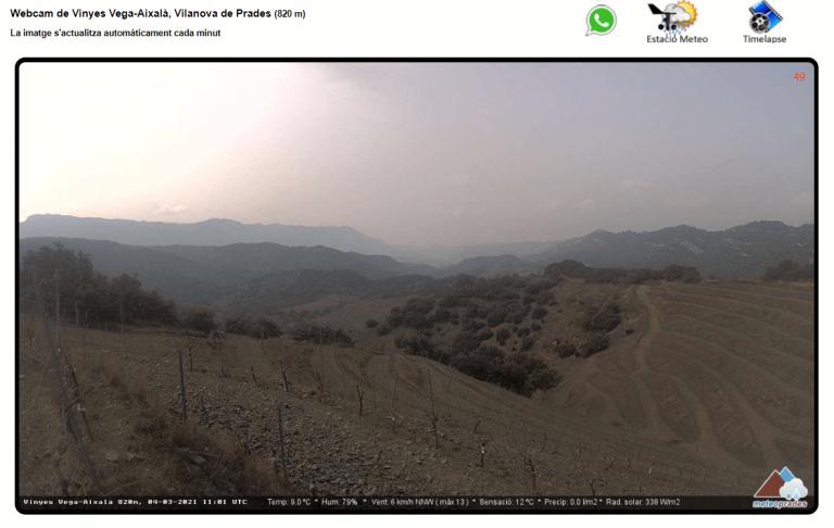 Webcam en las viñas de Vega Aixalà